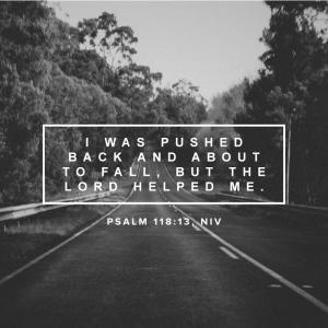 Psalm 118_13, NIV